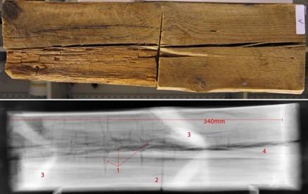 Klikk for stort bilde. Røntgenbilde av brunråte, identifisert på grunnlag av råteklossenes (de vertikale krakeleringene/sprekkene) innbyrdes avstand. Råteangrepet var ikke synlig på overflaten av materialprøven. (Foto: NIKU)