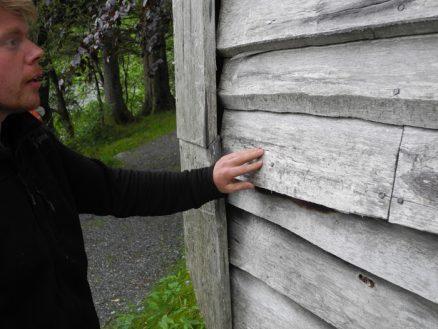 Ospekledningen er den som har klart seg dårligst, konstaterer Ruben Oddekalv som har ansvar for vedlikehold av bygningene på Seletun.